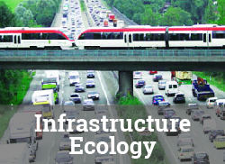 """Image of commuter train overpass over freeway with text overlay, """"Infrastructure Ecology."""""""